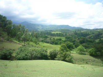 Sosua, Puerto Plata, ,Investments/Land/Commercial,For Sale,1097